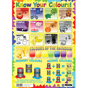 Details about KNOW YOUR COLOURS EDUCATIONAL POSTER EARLY LEARNING WALL ...
