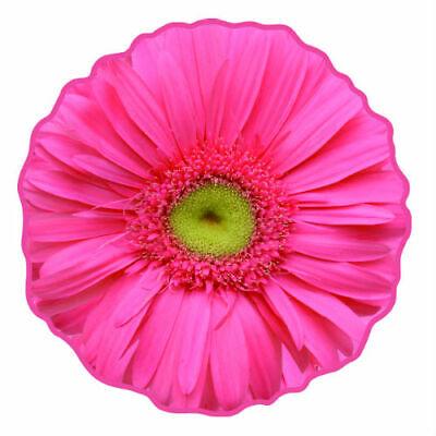 Pink Gerbera Flower Hand Towel Made in IMABARI JAPAN REALISTIC MOTIF TOWEL