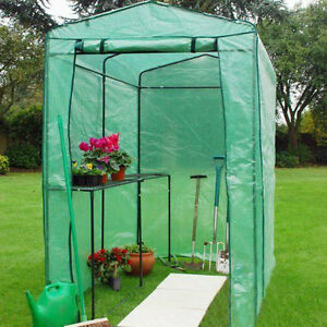 EXTRA LARGE WALK IN GREENHOUSE WITH SHELVING PVC COVER OUTDOOR GARDEN PLASTIC