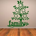 Family Tree Wall Decals Wall Stickers