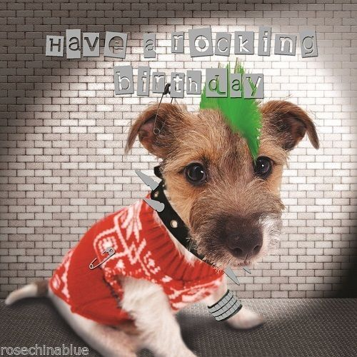 Funny Jack Russell Terrier Dog Birthday Card Punk Rocker