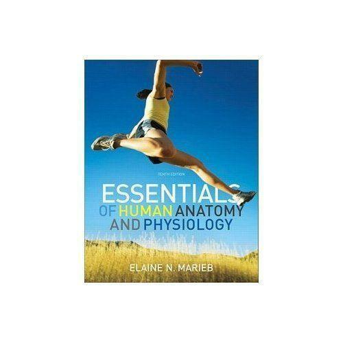 Essentials of Human Anatomy and Physiology | eBay