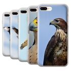Birds of Prey Cases, Covers and Skins for Apple iPhone 8 Plus