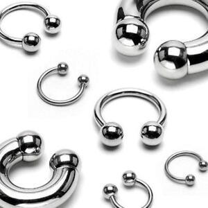 Horseshoe Earrings 18g