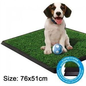 Large Indoor Dog Pet Potty Zoom Park Training Portable Toilet Ringwood East Maroondah Area Preview