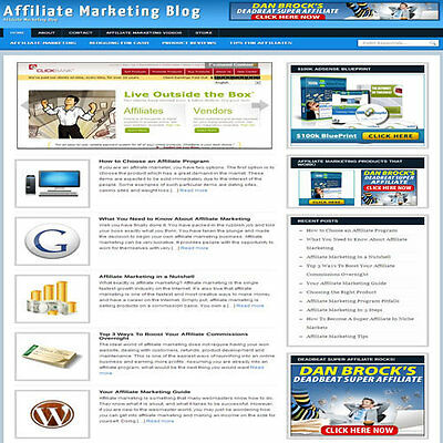 Established Affiliate Marketing Website Turnkey Business Free Hosting