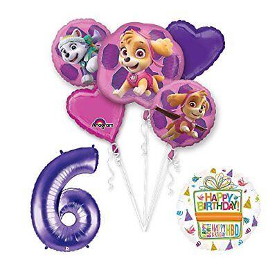PAW PATROL SKYE & EVEREST 6th Birthday Party Balloons Suppli