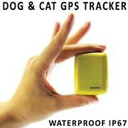 Pet Tracker