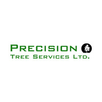 Best tree pruning service