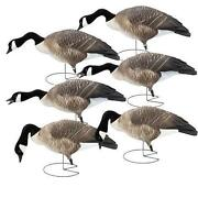 Greenhead Gear Decoys