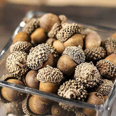 75 Artificial Acorns Fall Autumn Thanksgiving Classroom Crafts Home Nature Decor](Halloween Craft Classroom)