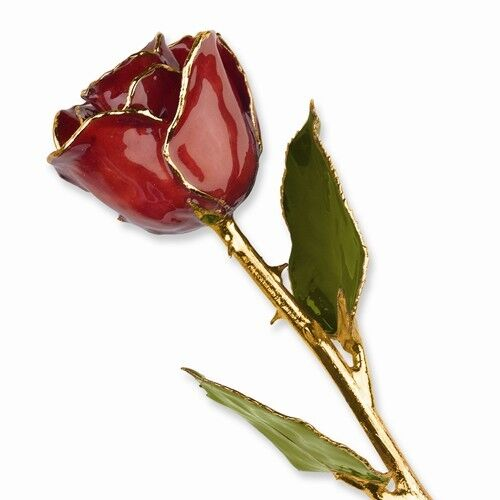 """Candy Apple Rose 24K Yellow Gold Trimmed Lacquered Burgundy Long Stem 12"""""""
