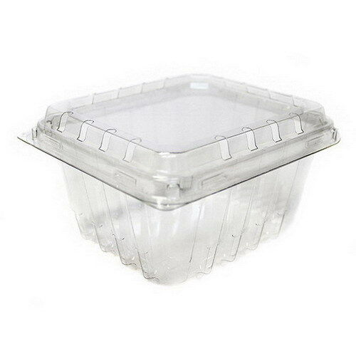 Pactiv PET Plastic Clamshell Food Container Clear, 1 pt.   516/Case