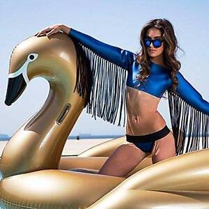 Inflatable Swan Giant Pool Floats $80 Stanmore Marrickville Area Preview