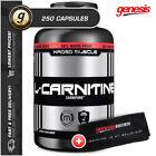 Capsule L-Carnitins Loss Supplements