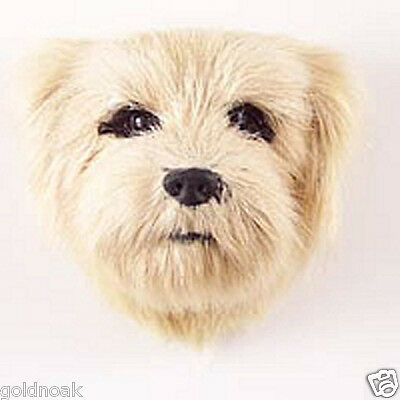 (1) NORFOLK TERRIER DOG MAGNET! Very realistic collectible fur Magnets.