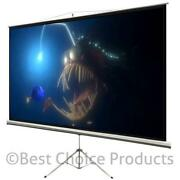 Projection Screen Stand