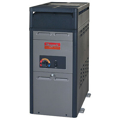 k BTU Heater Electronic Ignition Natural Gas Heater-014779 (Electronic Ignition Natural Gas Heater)