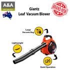 Petrol Leaf Leaf Vacuums