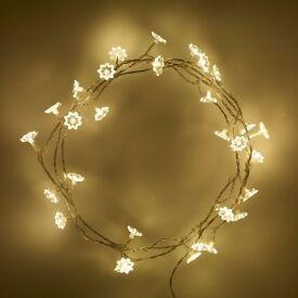 30 LED Petal Lights With Transformer - Brand New - Kilmarnock Area
