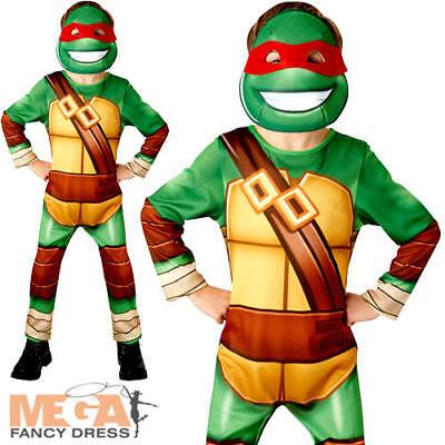 Teenage Mutant Ninja Turtle Boys Superhero Fancy Dress Kids Childrens Costume