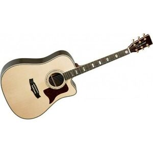 Solid Wood Acoustic Electric Guitar With Case