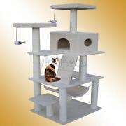 Cat Play House