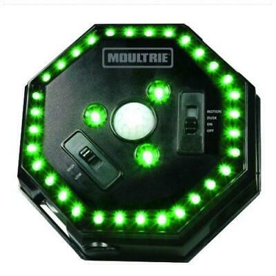 Moultrie Feeder Hog Light | 35 LEDs | 4-Way Switch | Attache