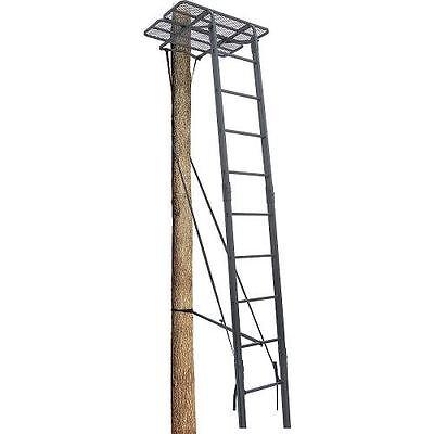 treestands dual rail ladder extension