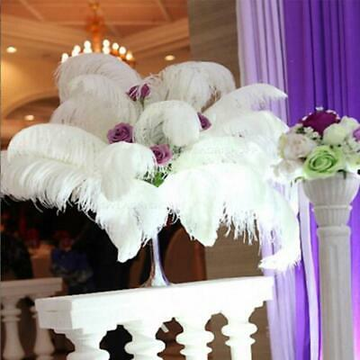 White Ostrich Feathers (10X Ostrich Feathers Plume Crafts Event DIY Wedding Party Decorations White)