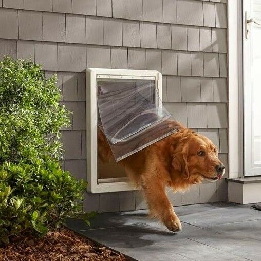 Super Extra Large Dog Pet Door Dual Flap Panel Frame Wall Mounted All Weather 30559999746 Ebay