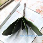 Silk Green Leaves