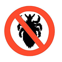 Head lice treatment for you child and your home