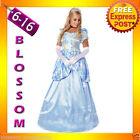 Satin Cinderella Costumes for Women