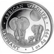 Somalia Elephant