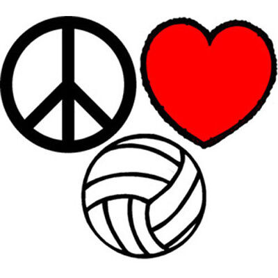 Tattoos Of Love (Authorized Retailer of Peace, Love, Volleyball Temporary)