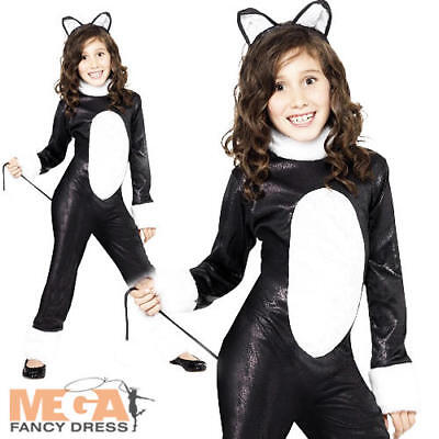 Cool Cat Girls Fancy Dress Animal Book Character Halloween Kids Childs Costume