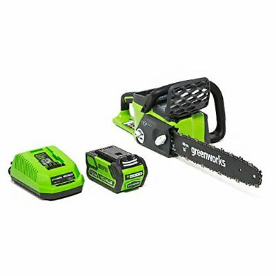 Greenworks 16-Inch 40V Cordless Chainsaw 4.0 AH Battery Included 20312