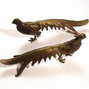 Brass Pheasant
