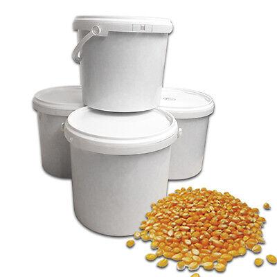 Popcornmais 4x 5kg Eimer, Popcorn Mais, Mushroom Popcorn, 20kg Mais