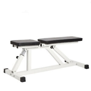 Adjustable Folding Sit Up AB Incline Abs Weight Bench Flat Fly Workout