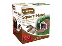 Squirrel Hotel - Brand New - Kilmarnock Area