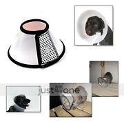 Dog Cone Collar