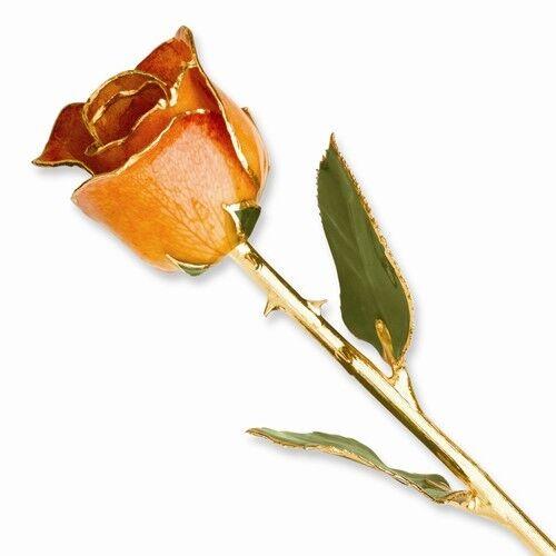 "ORANGE SHERBET ROSE 24K Yellow Gold Trimmed Lacquered Long Stem Rose 12"""