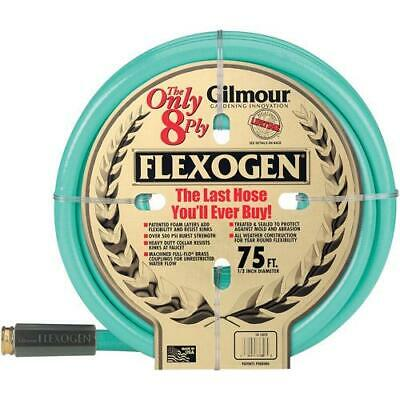 Gilmour Heavy Duty 1/2 in X 75' 8 Ply Flexogen Garden Yard 500 PSI Watering Hose (8 Ply Flexogen Garden Hose)
