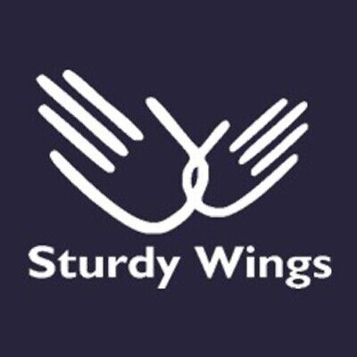 Sturdy Wings T-shirt Role Models Movie 5 Colors (Xxx Large Model)