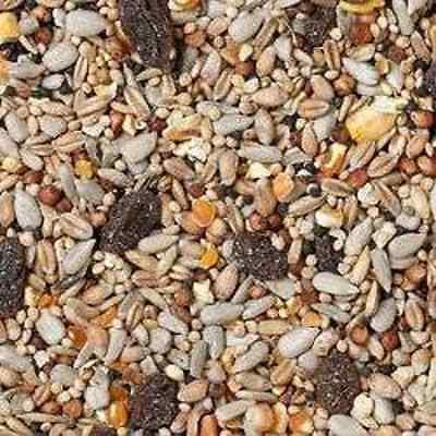 20kg Johnston & Jeff SUPERIOR Wild Bird Seed With Fruit - Husk Free/No Mess