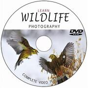 Digital Photography DVD