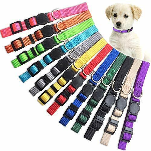 Puppy ID Collar Identification Soft Nylon Adjustable Breakaway S 12 colors