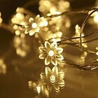Wedding Flower Rope/Wire String Lights